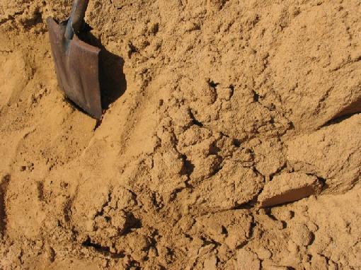 cavando en la arena