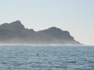 isla_perfil